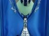 Coppa Campioni 2015 - Varie medagliere - (5)