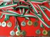 Stage settore arbitrale 28.nov.2015 - medagliere- (2)